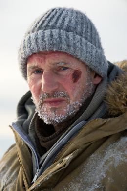 photo 3/27 - Liam Neeson - Le Territoire des loups - © Metropolitan Film
