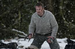 photo 23/27 - Liam Neeson - Le Territoire des loups - © Metropolitan Film