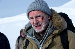 photo 7/27 - Liam Neeson - Le Territoire des loups - © Metropolitan Film