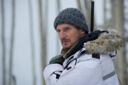 photo 18/27 - Liam Neeson - Le Territoire des loups - © Metropolitan Film