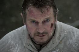 photo 22/27 - Liam Neeson - Le Territoire des loups - © Metropolitan Film