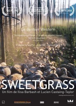 photo 6/6 - Sweetgrass - © Mandragora