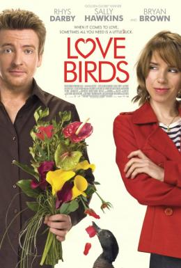 photo 2/2 - Love Birds