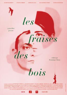 photo 5/5 - Affiche du film - Les Fraises des bois - © Contre Allée Distribution