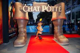 photo 133/135 - Présentation parisienne du film Le Chat Potté - Le Chat Potté - © Paramount
