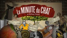 photo 1/4 - La Minute Chat de Philippe Geluck - Vol.1 - © Studio Canal Vidéo