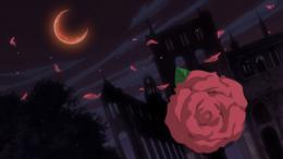 photo 10/10 - Vampire Knight - Saison 2 - Intégrale - © Kazé