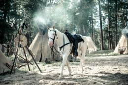 photo 12/105 - Lone Ranger - © Walt Disney Studios Motion Pictures France