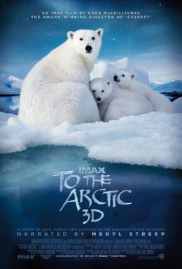 photo 1/1 - Ours polaires - Banquise en péril