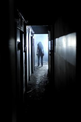 Ghost Machine photo 10 sur 17