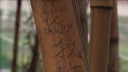 photo 2/9 - La Dernière fois que j'ai vu Macao - © Epicentre Films
