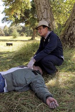 NCIS Enquêtes spéciales - Saison 8 David McCallum photo 10 sur 12