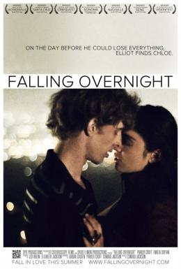 photo 1/1 - Falling Overnight