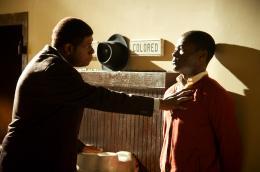 photo 11/31 - Forest Whitaker et David Oyelowo - Le Majordome - © Metropolitan Film