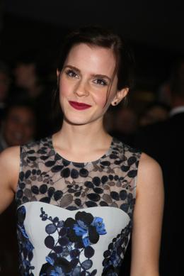 photo 36/42 - Emma Watson-Pr�sentation du film Le Monde de Charlie au 37�me Festival International du film de Toronto 2012 - Le Monde de Charlie - © Isabelle Vautier pour CommeAuCin�ma