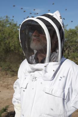photo 3/14 - Des abeilles et des hommes - © Jour2Fête