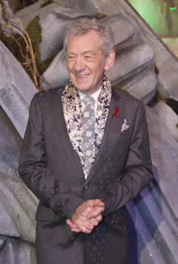 photo 67/125 - Ian McKellen - Avant-premi�re � Londres - Le Hobbit : La Bataille des Cinq Arm�es - © Warner Bros