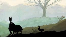 photo 1/2 - Le chemin d'un lièvre