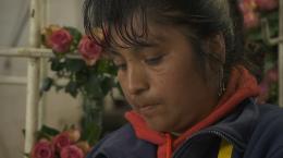 photo 27/30 - Ecuador, une politique au-delà de l'utopie - © Myriapodus Films