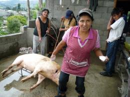 Ecuador, une politique au-delà de l'utopie photo 6 sur 30