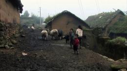 Les trois Soeurs de Yunnan photo 4 sur 7