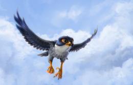 Drôles d'oiseaux photo 1 sur 8