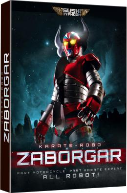 photo 1/2 - Karate Robot Zagobar - © Zylo