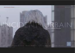 Incident urbain photo 4 sur 4