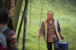 Li Baotian Le Promeneur d'oiseau photo 5 sur 7