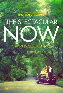 photo 20/21 - The Spectacular Now