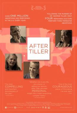 photo 4/4 - After Tiller