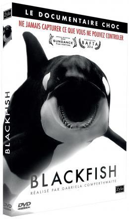 photo 20/23 - Blackfish