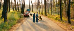 photo 4/12 - Emile Hirsch, Paul Rudd - Prince of Texas - © Memento Films