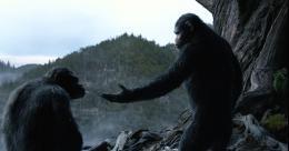 photo 14/55 - La Planète des singes : l'Affrontement - © 20th Century Fox