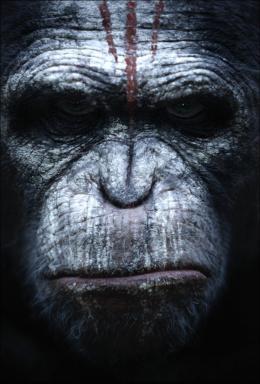 photo 48/55 - La Planète des singes : l'Affrontement - © 20th Century Fox