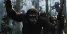 photo 17/55 - La Planète des singes : l'Affrontement - © 20th Century Fox