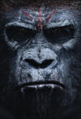 photo 49/55 - La Planète des singes : l'Affrontement - © 20th Century Fox