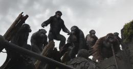 La Planète des singes : l'Affrontement photo 5 sur 55