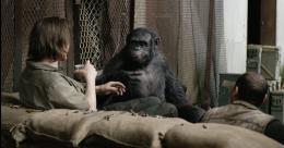 photo 13/55 - La Planète des singes : l'Affrontement - © 20th Century Fox