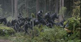 La Planète des singes : l'Affrontement photo 1 sur 55