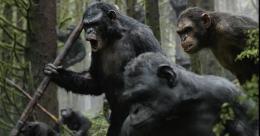 photo 12/55 - La Planète des singes : l'Affrontement - © 20th Century Fox