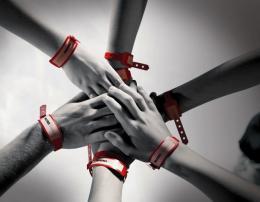 Les Bracelets rouges photo 1 sur 16