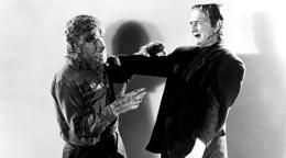photo 1/1 - Frankenstein rencontre le loup-garou