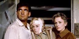 photo 5/8 - Rod Taylor, Tippi Hedren et Jessica Tandy - Les Oiseaux - © Universal Pictures