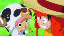 photo 6/13 - One Piece Z - © EuroZooM