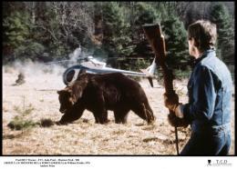 photo 7/10 - Grizzly, le monstre de la forêt - © Filmedia