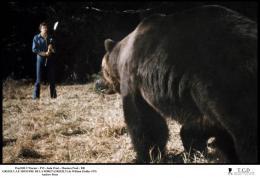 photo 10/10 - Grizzly, le monstre de la forêt - © Filmedia