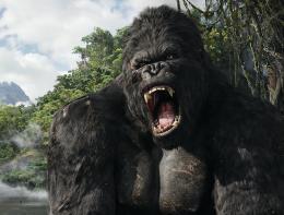 photo 56/360 - King Kong
