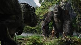 photo 19/360 - King Kong