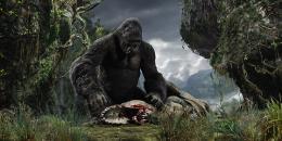 photo 17/360 - King Kong